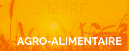 Secteur agro-alimentaire